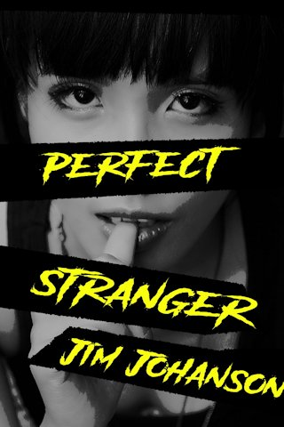 Perfect Stranger short story cover